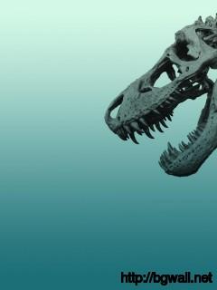 dinosaurs-skelton-wallpaper-widescreen-hd
