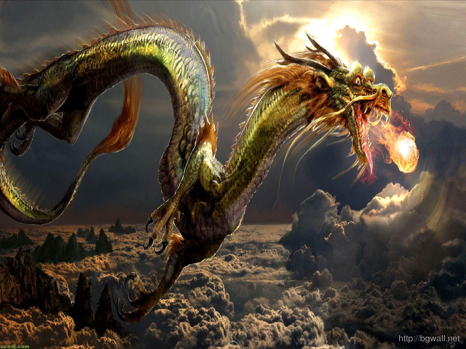 miscellaneous fire dragon picture - photo #13