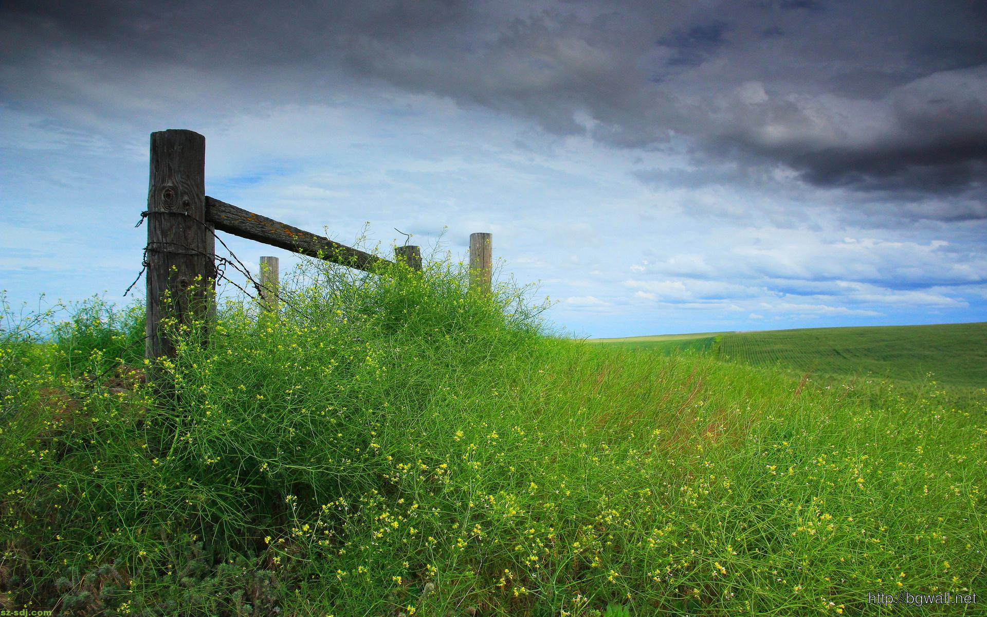 fence-with-grass-wallpaper-high-resolution