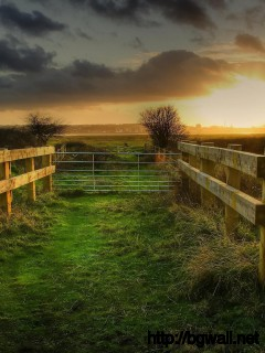 fencing-sunset-nature-wallpaper-widescreen