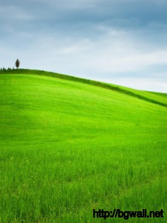 green-hill-wallpaper-for-desktop