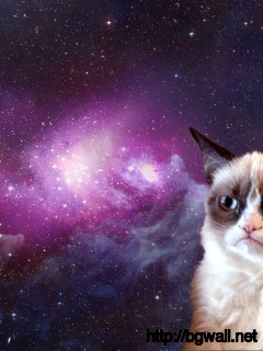 grumpy-cat-at-space-images-wallpaper-pc-desktop