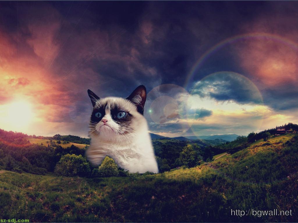 grumpy-cat-become-hill-image-desktop-wallpaper-mac