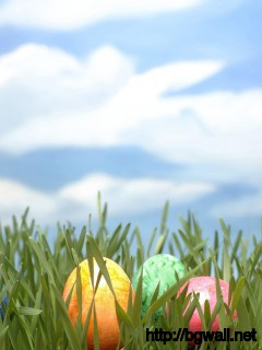 happy-easter-day-wallpaper-hd-picture