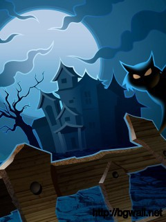 happy-halloween-cat-wallpaper-widescreen