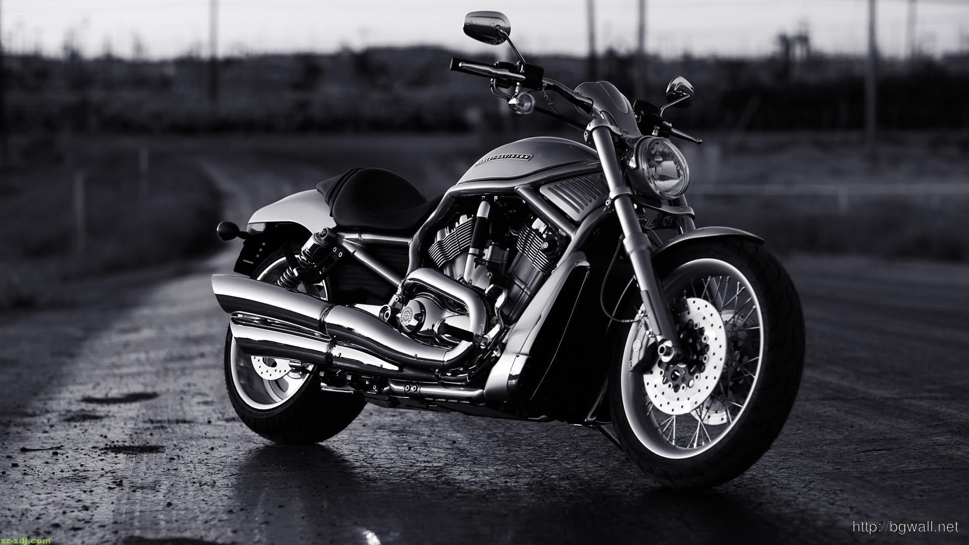 White Harley Davidson: Harley Davidson Black White Wallpaper
