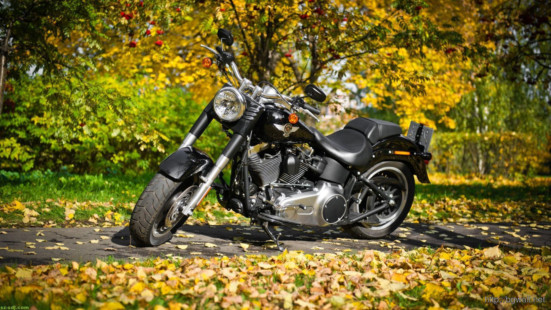 Harley Davidson Image Wallpaper – Background HD